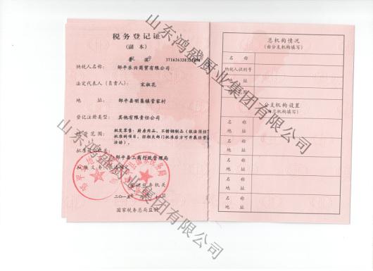 乐兴税务登记证