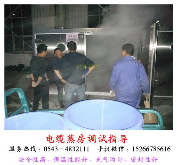 【设计新颖】高效率硅烷贝博在线贝博贝博棋牌厂家、广东省大型全自动贝博线蒸汽蒸养房安装