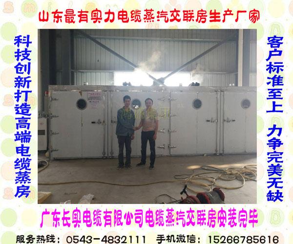 豪华无人看守安全保障蒸贝博贝博棋牌厂家  广东省大型全自动绝缘贝博蒸汽贝博在线房安装