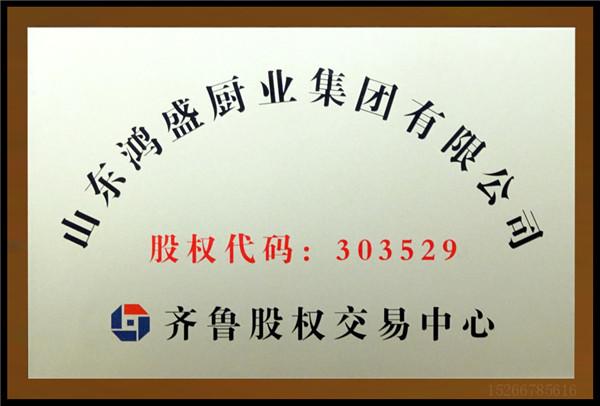 鸿盛集团齐鲁股权交易中心股权代码,齐鲁股权交易中心成长板挂牌交易文件